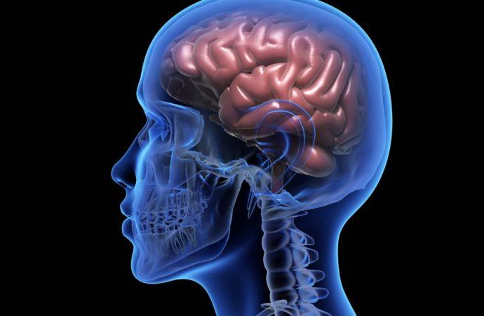 A Harvard kutatói kimutatták: meditációval visszafejlődik az agy stresszközpontja